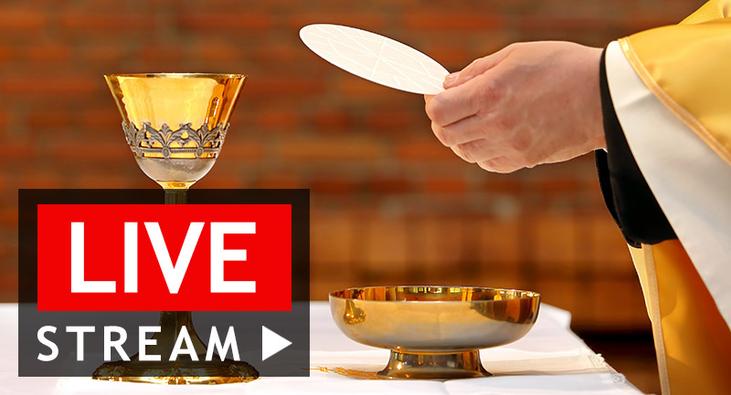 Live Stream Sunday Mass: Priest holding up the Eucharist.